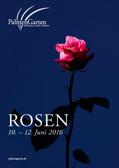 rosen_plakat2016